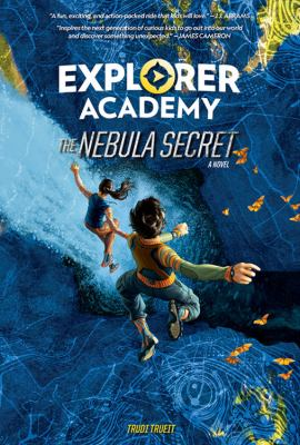 Cover image for The nebula secret