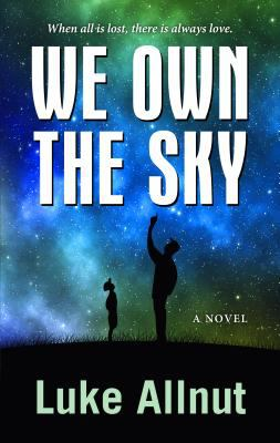 Cover image for We own the sky : a novel