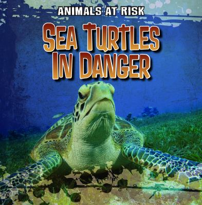 Cover image for Sea turtles in danger