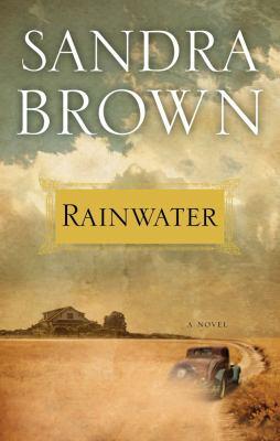 Cover image for Rainwater : a novel