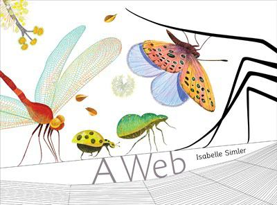 Cover image for A web