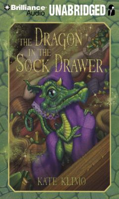 Cover image for The dragon in the sock drawer