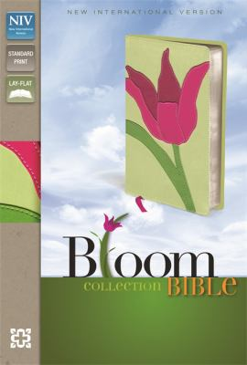 Cover image for Holy Bible : New International Version.