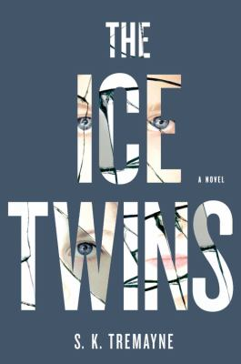 Cover image for The ice twins
