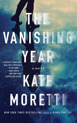 Cover image for The vanishing year : a novel