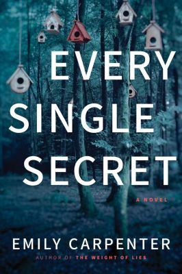 Cover image for Every single secret : a novel