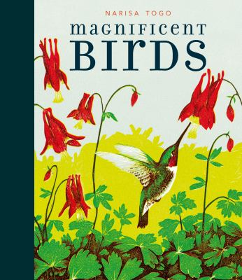 Cover image for Magnificent birds