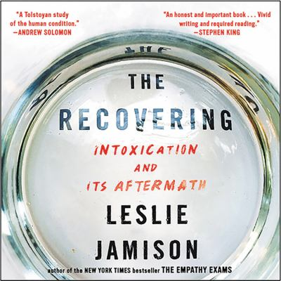 Cover image for The recovering : intoxication and its aftermath