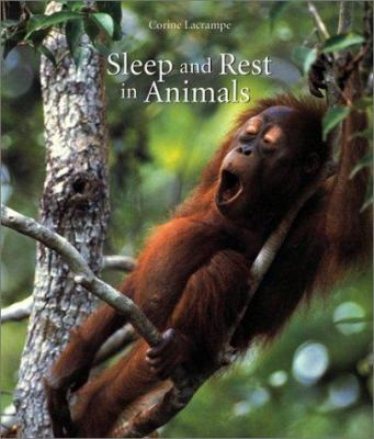 Cover image for Sleep and rest in animals