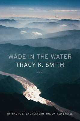 Cover image for Wade in the water : poems
