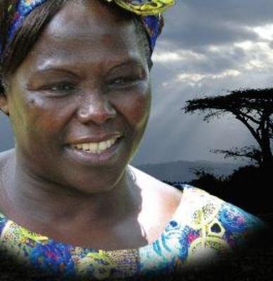 Cover image for Taking root the vision of Wangari Maathai