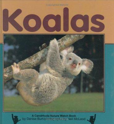 Cover image for Koalas