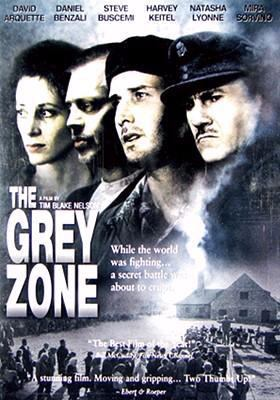 Cover image for The grey zone