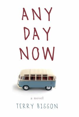 Cover image for Any day now : a novel