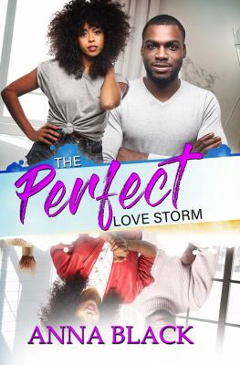 Cover image for The perfect love storm