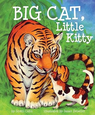 Cover image for Big cat, little kitty