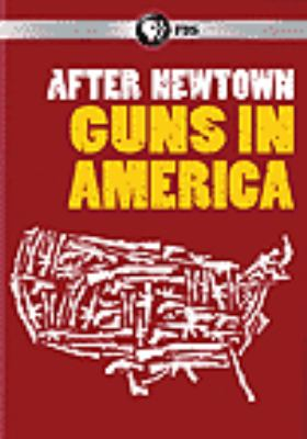 Cover image for After Newtown : Guns in America