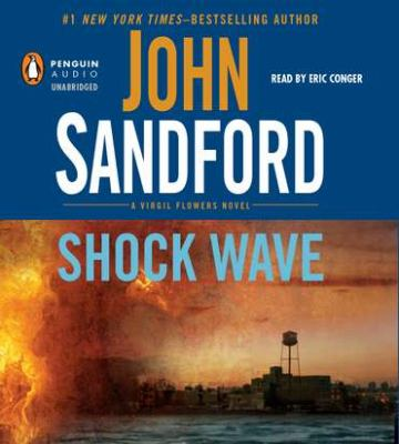 Cover image for Shock wave