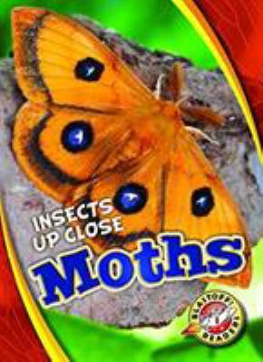 Cover image for Moths