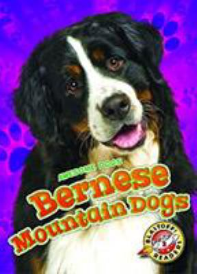 Cover image for Bernese mountain dogs