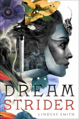Cover image for Dreamstrider