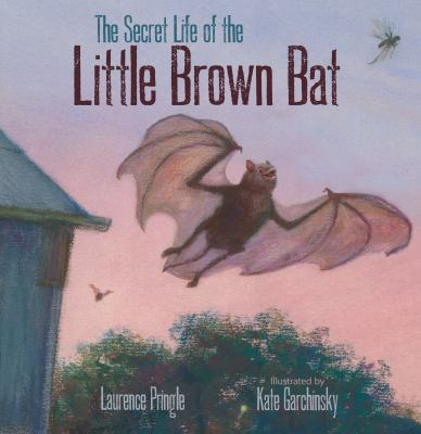 Cover image for The secret life of the little brown bat