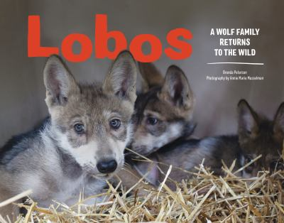 Cover image for Lobos : a wolf family returns to the wild