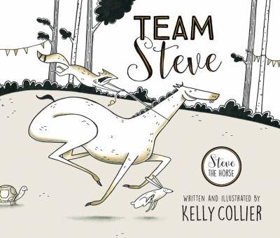 Cover image for Team Steve