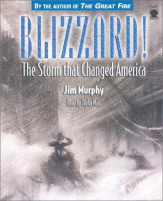 Cover image for Blizzard the storm that changed America