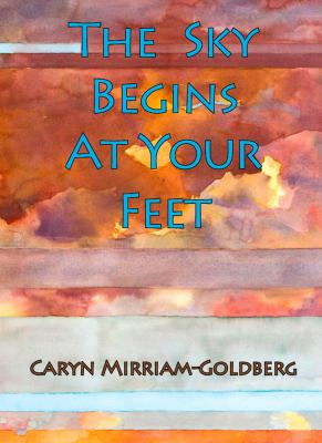 Cover image for The sky begins at your feet : a memoir on cancer, community, and coming home to the body