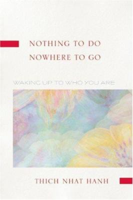 Cover image for Nothing to do, nowhere to go : waking up to who you are