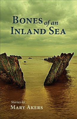 Cover image for Bones of an inland sea