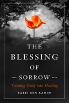 Cover image for The blessing of sorrow : turning grief into healing