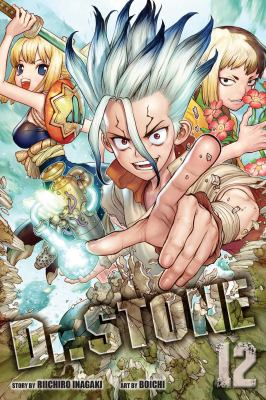 Cover image for Dr. Stone. 12, The secret of petrification
