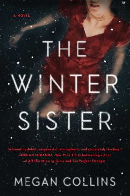 Cover image for The winter sister