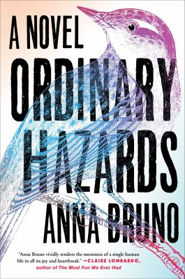 Cover image for Ordinary hazards : a novel