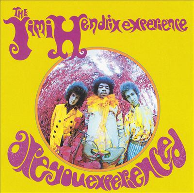 Cover image for Are you experienced?