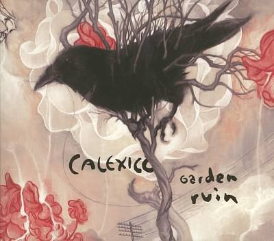 Cover image for Garden ruin