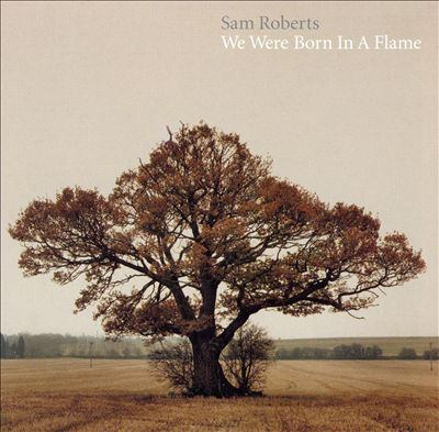 Cover image for We were born in a flame