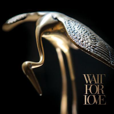 Cover image for Wait for love