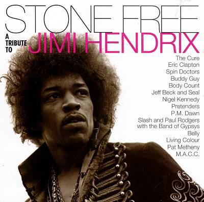 Cover image for Stone free a tribute to Jimi Hendrix.