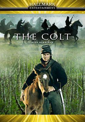 Cover image for The colt
