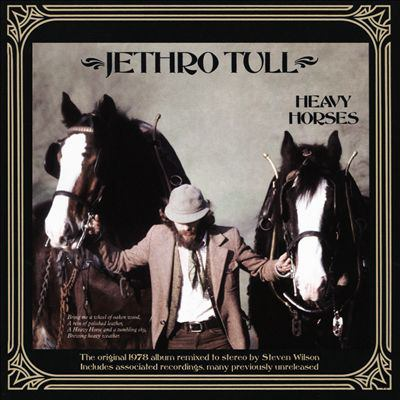 Cover image for Heavy horses