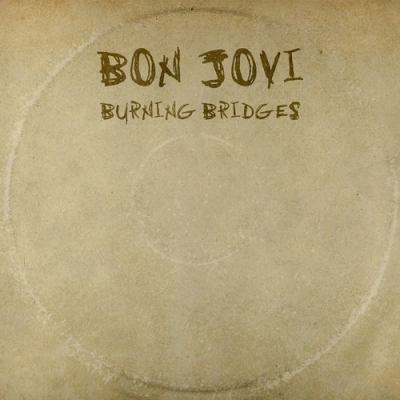 Cover image for Burning bridges