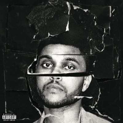 Cover image for Beauty behind the madness