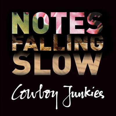 Cover image for Notes falling slow