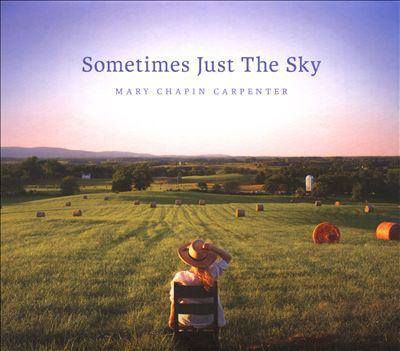 Cover image for Sometimes just the sky