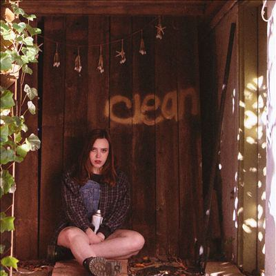 Cover image for Clean