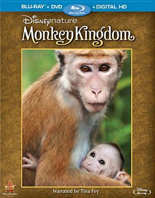 Cover image for Monkey kingdom