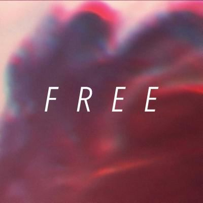 Cover image for Free